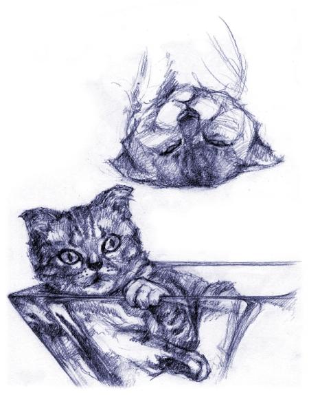 source (213)_sketch